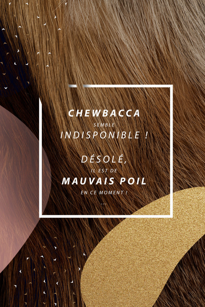 visuel page contact chewbacca